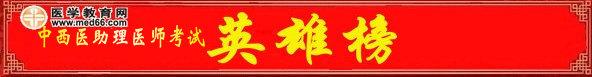 2012年中西医结合助理医师考试高分榜