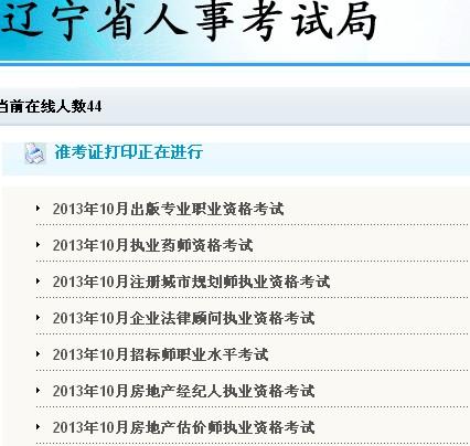 2013年辽宁执业药师准考证打印入口