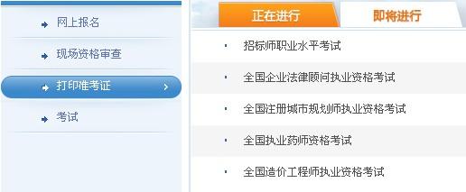 黑龙江2013年执业药师准考证打印入口