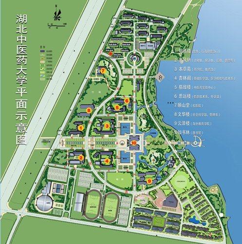 中医药大学平面图