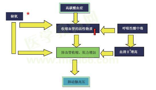 简述移民流行病学的原理_三、流行病学原理和方法