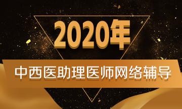 2020年辅导课程