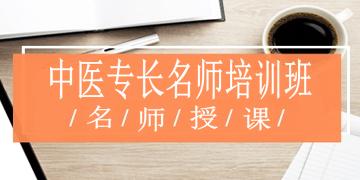 中医医术专长考试辅导课程