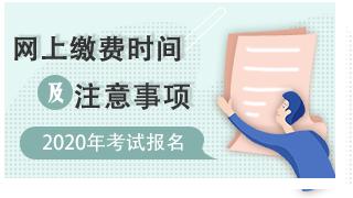 2020中药士/中药师/主管中药师考试网上缴费时间 地区