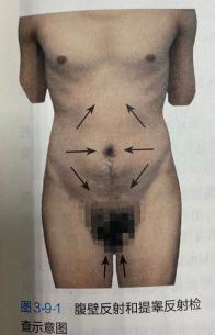 临床助理医师考试:《答疑周刊》2020年第46期