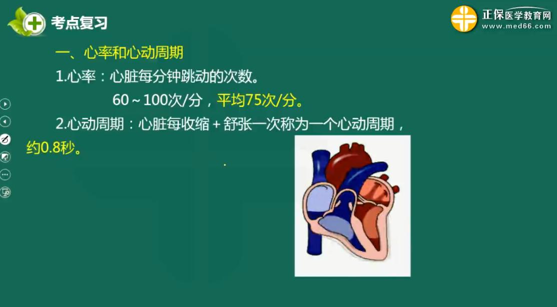 【医学基础知识】血液循环系统--心率和心动周期