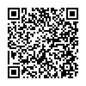 陜西考區2021年中西醫助理醫師綜合考試準考證打印入口/時間