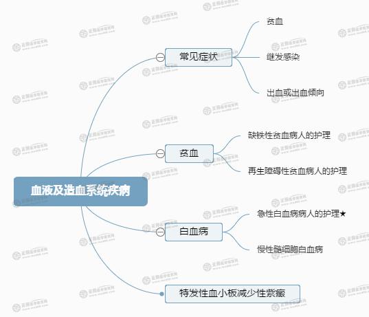 【考点归纳】血液及造血系统疾病病人的护理(思维导图)