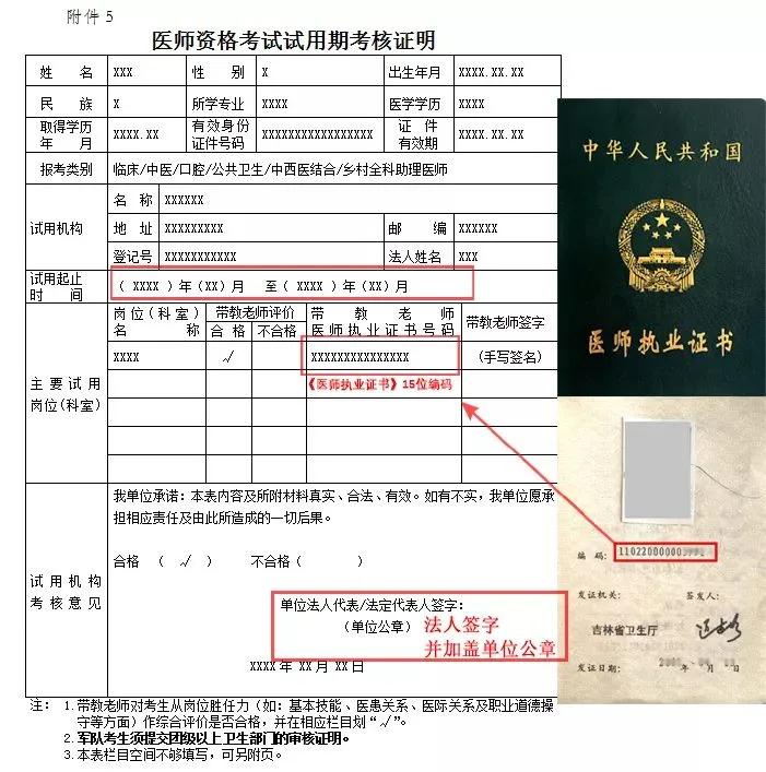 医师资格考试试用期考核证明(1)