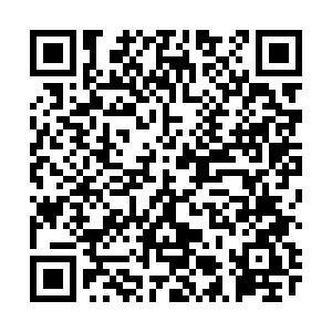 仿真模拟卷第一单元口腔助理医师资格考试(146-150题)