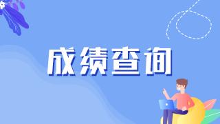 南京考点|关于开通2021年医师资格考试医学综合考试成绩查询的通知